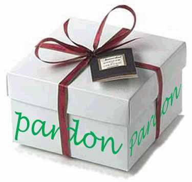 Paquet cadeau1